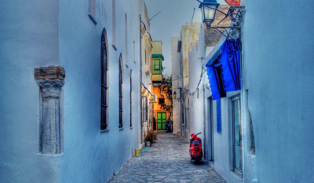 Découvrir le nord de la Tunisie : entre culture et nature avec notre expert Selim