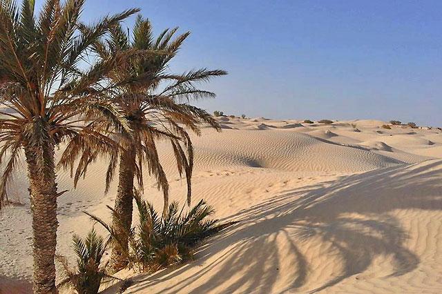Logement atypique en Tunisie - AT02